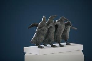 Kleine Pinguïns